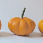 ミニかぼちゃのレシピ