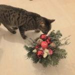 フランスのクリスマス飾り